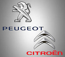 Инструмент Peugeot & Citroen