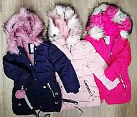 Куртки зимние для девочек S&D 4-12 лет.