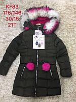 Куртки зимние для девочек S&D 116-146 рр.