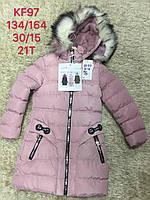 Куртки зимние для девочек S&D 134-164 рр.