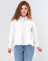 1108f8ef4c9 Женская асимметричная блузка белого цвета с длинным рукавом. Модель 19626.  Размеры 50-56