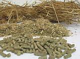 Измельчитель соломы или сена, Измельчитель травы, фото 5