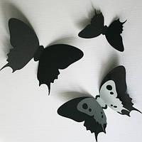 3d наклейки на стену Набор 3Д бабочек Классика (ПВХ наклейки стикеры декор двухслойные картон) матовая , фото 1