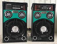 Акустическая система AILIANG USBFM-298F-DT, bluetooth акустика, колонки 10''+10''/USB/SD/FM