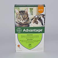 Адвантейдж (Advantage )40- для котов весом до 4кг и мелких домашних животных 1пипетка