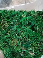 Мох искусственный зеленый для декорирования и флористики 1000 гр Польша .