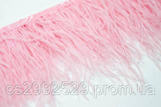 Перо страуса (10м)розовый, фото 2