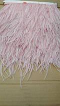 Перо страуса (10м)розовый, фото 3