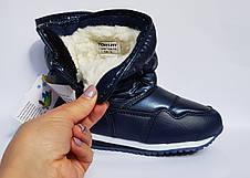 Зимние сапожки, дутики Tom.m,для мальчиков,синие 24р, фото 2