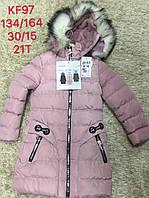 Куртка на меху для девочек S&D ,8-16 лет. Артикул: KF97
