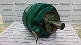 Насос пластинчатый (лопастной) однопоточный БГ12-22АМ (габарит1), фото 3