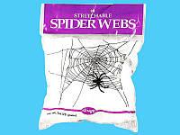 Біле павутиння з павуками