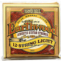 Струны Ernie Ball 2010 Earthwood Bronze Alloy 12-String Light 9-46, фото 1