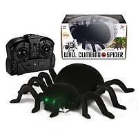 Паук на радиоуправлении WALL CLIMBING SPIDER