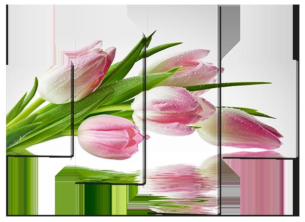 Модульная картина Тюльпаны отражение Искусственный холст, 146x109