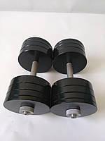 Гантели металлические 2 шт по 30 кг