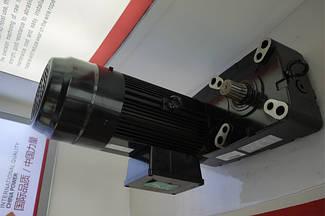Мотор 3-в-одном для крана WeiHua. Мотор для крана с редуктором в сборе