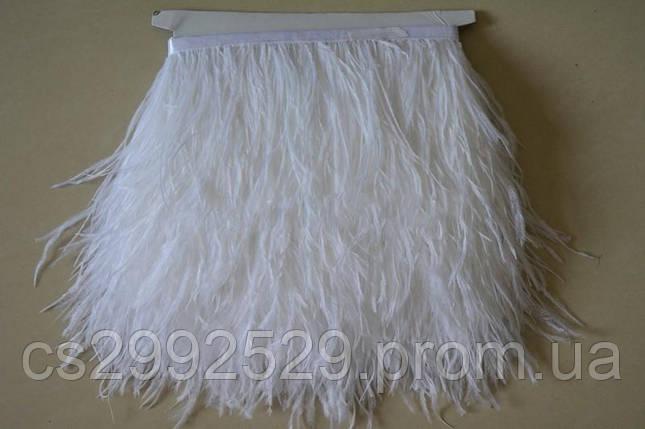 Перо страуса (10м)белый, фото 2