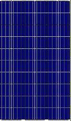 Солнечная панель Leapton  LP72-330P / 5 BB, 330 Вт, Poly