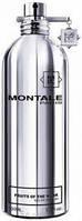 Montale Fruits Of The Musk парфюмированная вода 100 ml. (Монталь Фрутс Оф Зе Муск), фото 1