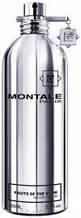 Montale Fruits Of The Musk парфумована вода 100 ml. (Монталь Фрутс Оф Зе Муска)