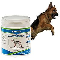 Витамины для суставов и костей собак с глюкозамином Canina PETVITAL GAG 360 таб