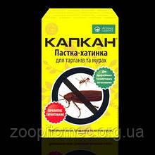 Пастка для тарганів і мурашок на клеї