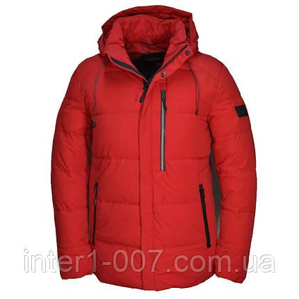 4bf1d476682d2 Мужская зимняя куртка Malidinu: продажа, цена в Харькове. куртки ...