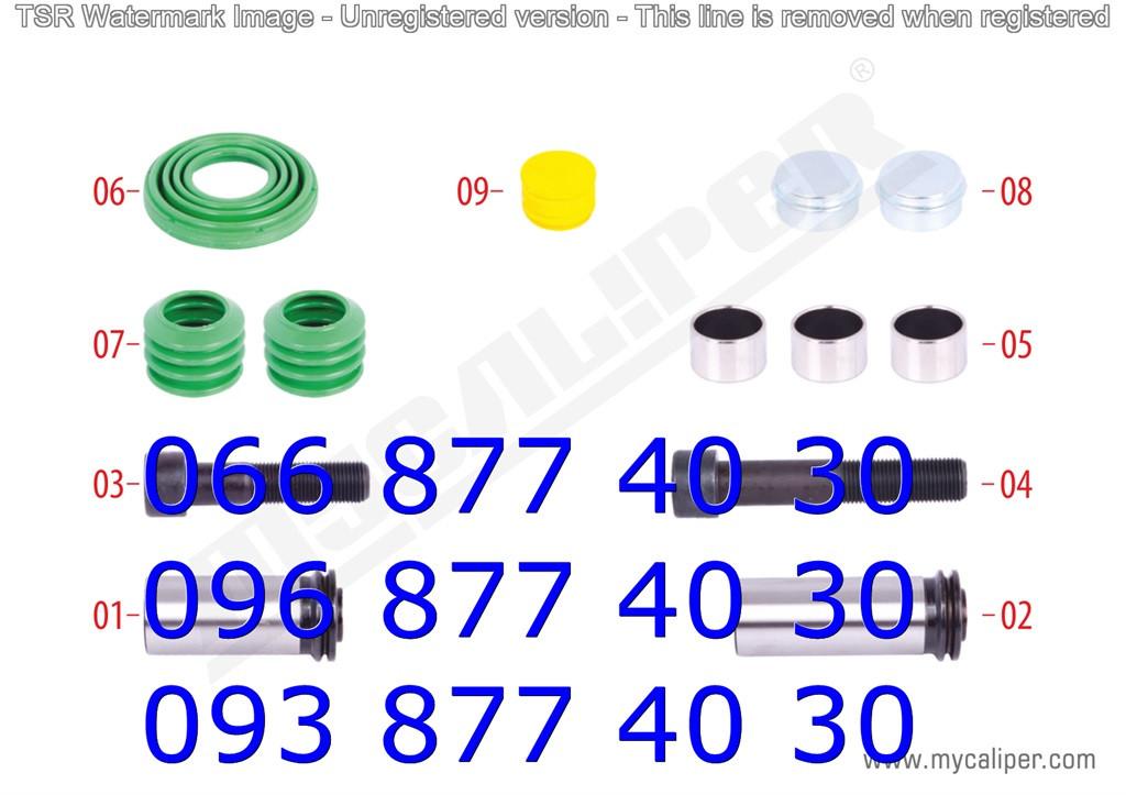 Ремкомплектт направляющих суппорта Wabco PAN17 MAN, DAF (LF45), IVECO ,со смазкой