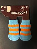 Носки для собак M