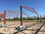 Ангар двускатный 12х30 склад помещения под бизнес, фермы, каркас, цех, фото 3