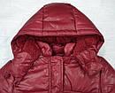 Куртка зимняя для девочки Dominika бордовая (QuadriFoglio, Польша), фото 3