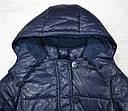 Куртка зимняя для девочки Dominika темно-синяя (QuadriFoglio, Польша), фото 2