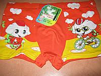 Шортики детские на мальчика с рисунком СЛОНИКИ размер 110 116 салатовые и  оранж e7de5a90140