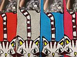 Носки женские Кошечки махра - Термо, фото 3