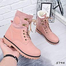 """Ботинки, ботильоны пудровые ЗИМА """"Tanya"""" эко нубук, повседневная, зимняя, теплая, женская обувь, фото 3"""