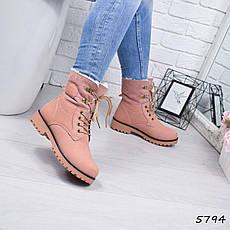 """Ботинки, ботильоны пудровые ЗИМА """"Tanya"""" эко нубук, повседневная, зимняя, теплая, женская обувь, фото 2"""