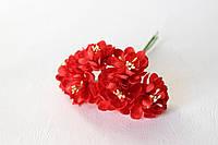 Цветы хризантемы (астры) 6 шт. диаметр 3,5-4 см красного цвета, фото 1