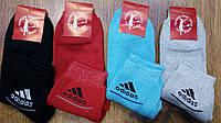 """Женские махровые хб носки в стиле""""Adidas"""",Турция, фото 1"""