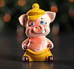 """Копилка """" Свинка"""" Ассортимент , фото 8"""