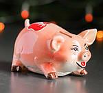 """Копилка """"Свинка"""" Ассортимент , фото 2"""