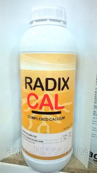 RADIX CAL