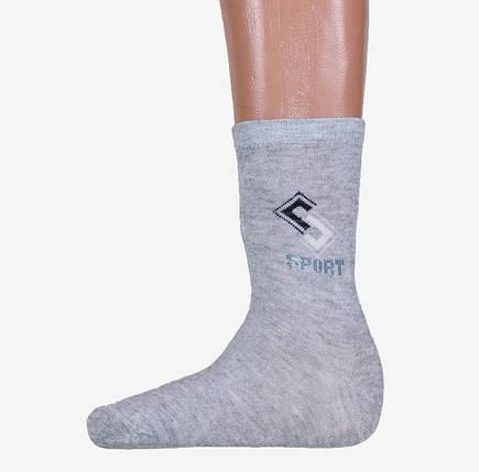 Мужские носки Sport (арт. A259), фото 2
