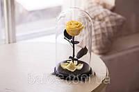 Живая вечная роза в стеклянной колбе Желтый топаз