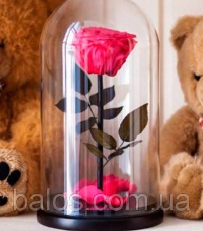 Живая вечная роза Долговечная роза в колбе