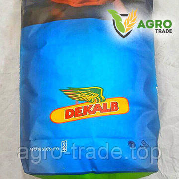 Семена кукурузы, Monsanto, DKС 3203, ФАО 240