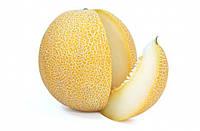 Семена Дыня Титовка