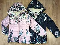 Куртки зимние для девочек Lemon Tree , в остатке  14,16, 16 рр