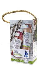 Biolage Recover SET Набор для восстановления повреждёных волос (шампунь+кондиционер) 325 мл Код 18418
