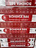 Радиатор биметаллический Bohemia B85,Богемия 500/85, Чехия, фото 4